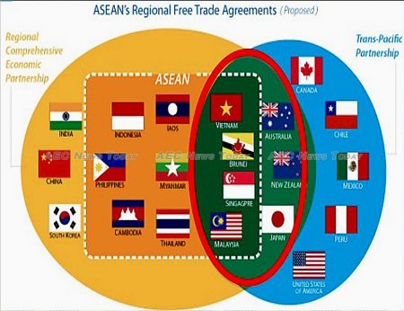 Japan and Australia are among former TPP members now trying to obtain that same 'gold standard of FTAs' with the RCEP that the TPP claimed