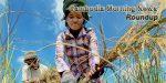 Cambodia Morning New 39 700 | Asean News Today