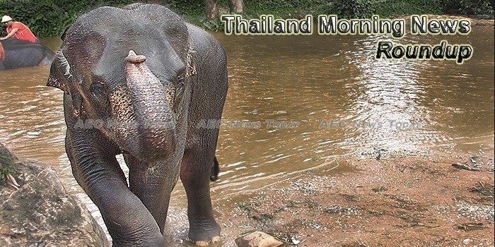 Thailand Morning News For January 31