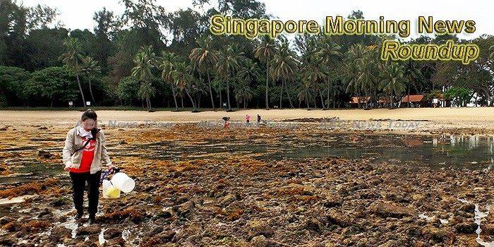 Singapore Morning News For June 6