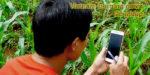 Vietnam morning news 43 18 700 | Asean News Today