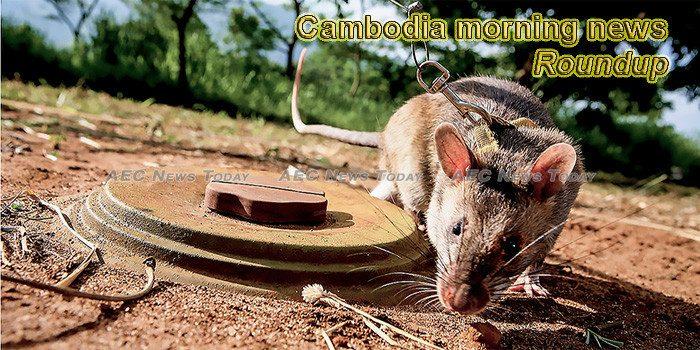 Cambodia morning news for November 7