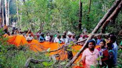 Buddhist monks come to protect Prey Lang forest (video)