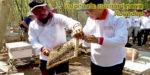Indonesia Morning News #20-19