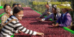 Myanmar morning news #41 - 19