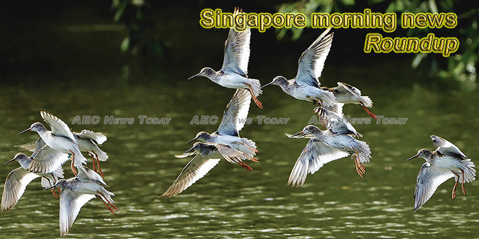 Singapore morning news for October 8