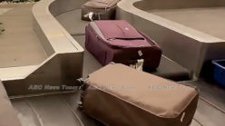 Wow! Watch Singapore Changi Airport's incredibly polite baggage system (video)