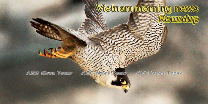 Vietnam morning news for January 31