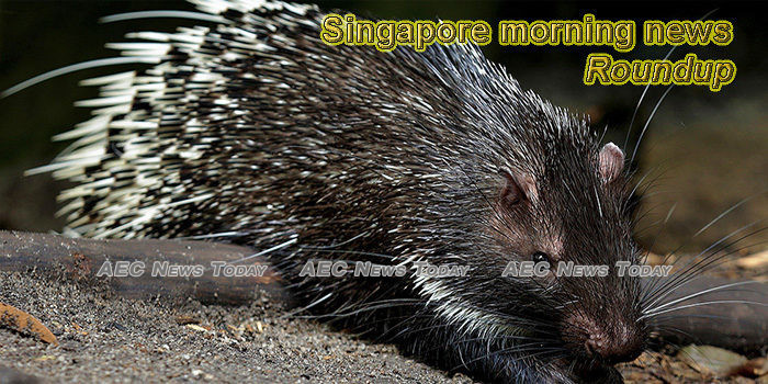 Singapore morning news for March 3