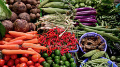 COVID-19: the time to act on food security is now