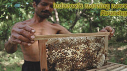 Indonesia morning news for May 21