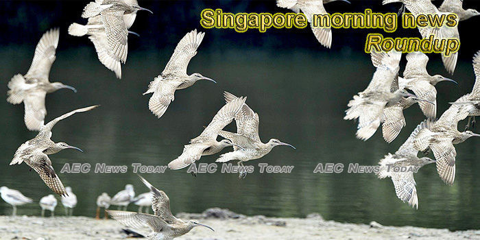 Singapore morning news for May 4