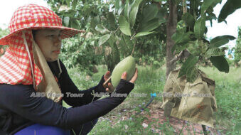 Cambodia morning news #29-20